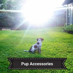 Pup Accessories